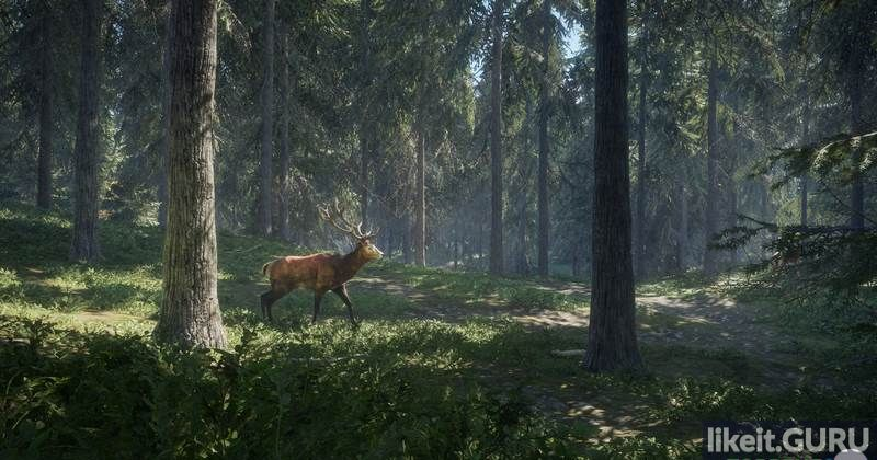 TheHunter Call of the Wild game torrent download