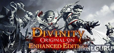 ✅ Download Divinity: Original Sin Full Game Torrent | Latest version [2020] RPG