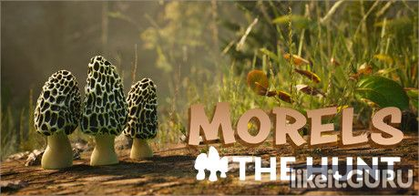 Download full game Morels: The Hunt via torrent on PC