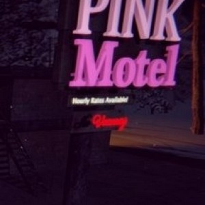 Download Hardcore Pink - Motel Full Game Torrent For Free (376.22 Mb)