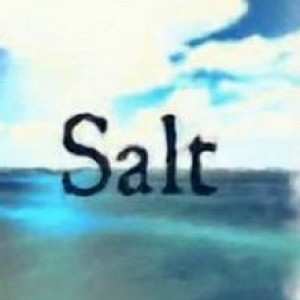 Salt Download Full Game Torrent (261 Mb)