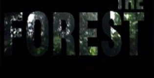 The Forest Download Full Game Torrent (925 Mb)