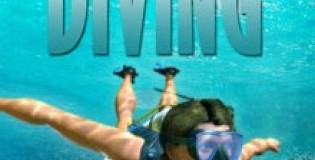 Download World Of Diving Game Free Torrent (2.50 Gb)